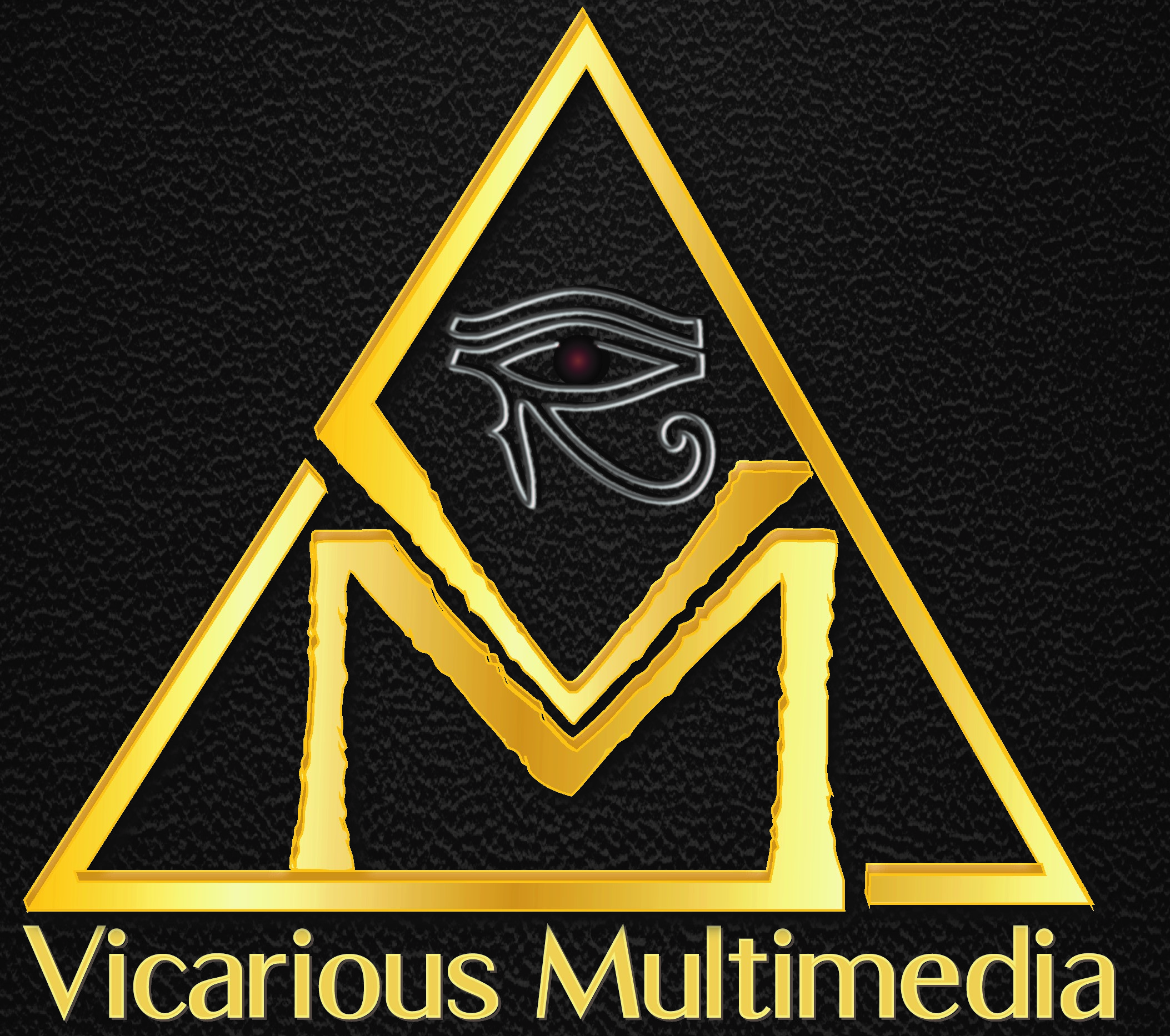 Vicarious Multimedia logo